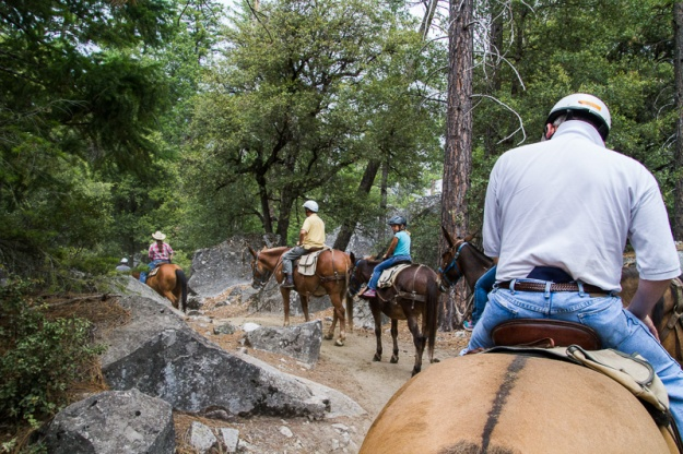 Trail Ride-6