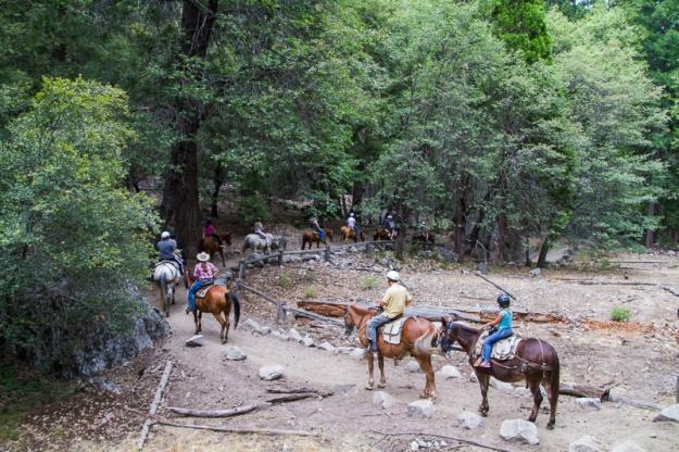 Trail Ride-7