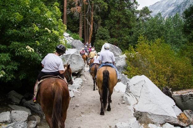 Trail Ride-8